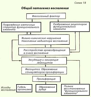 Глава 4 общие реакции организма на повреждение.