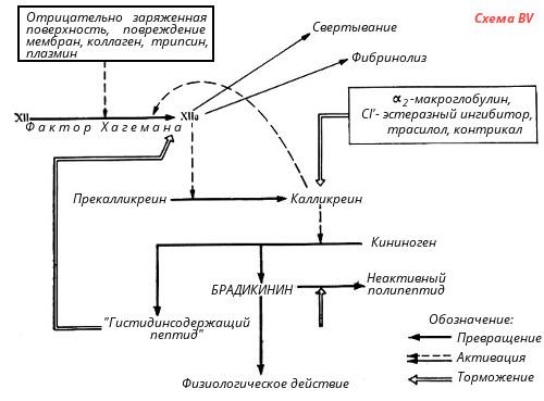 Основные компоненты системы