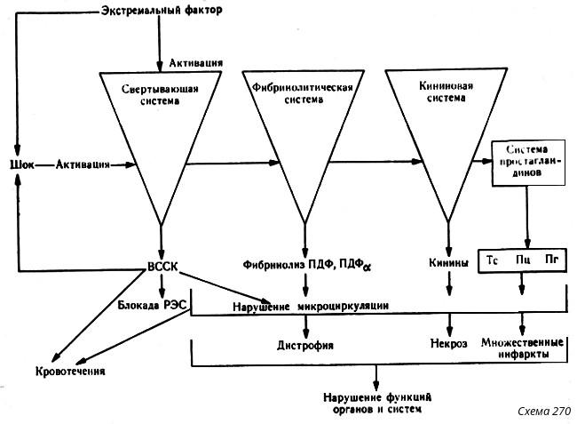 инфаркты (см. схему 270).