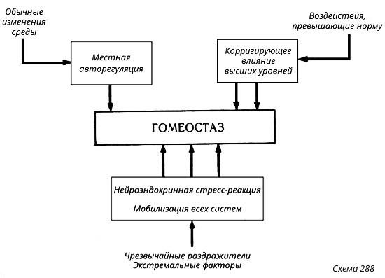 реакции организма на паразитов