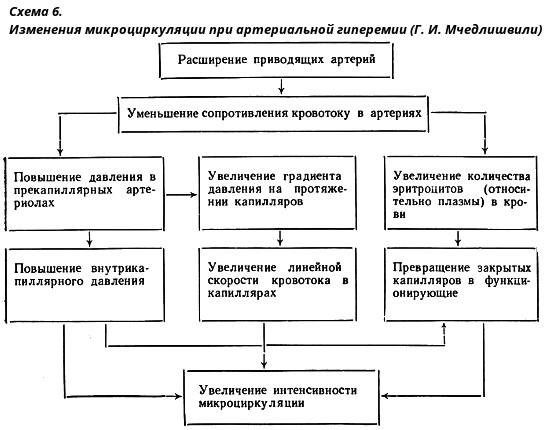 Занятие в школе здоровья для пациентов с артериальной гипертензией