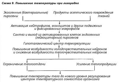 Лечение пиявками при гипертонии в центре москвы