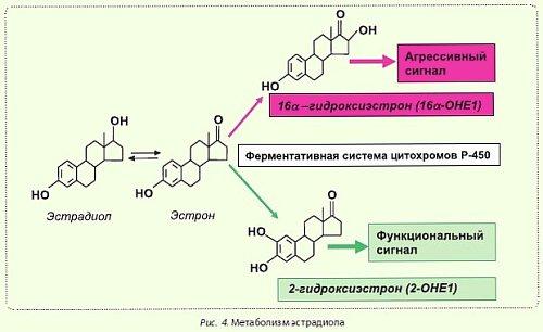 влияние высокого холестерина на организм
