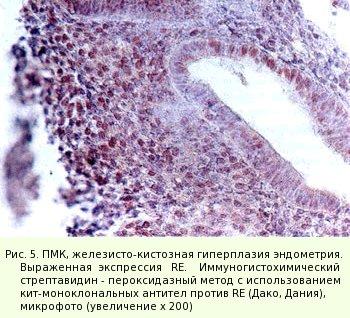 Влияние на эндометрий