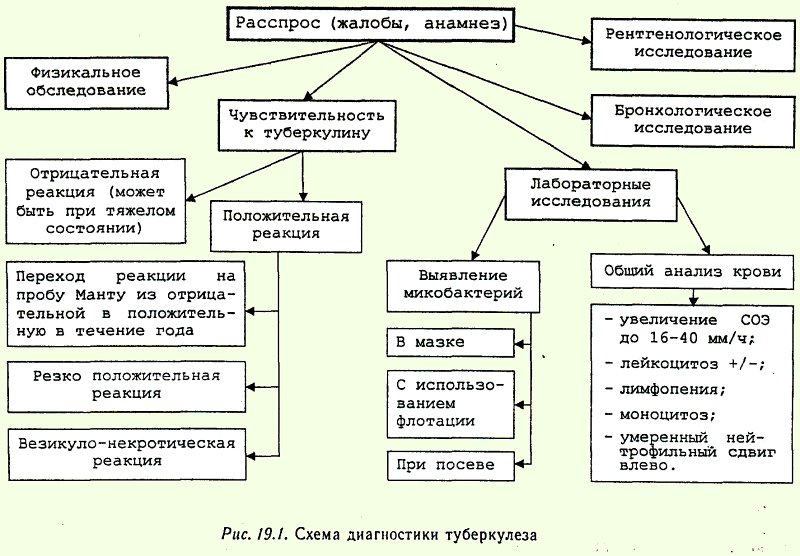 диагностики туберкулеза