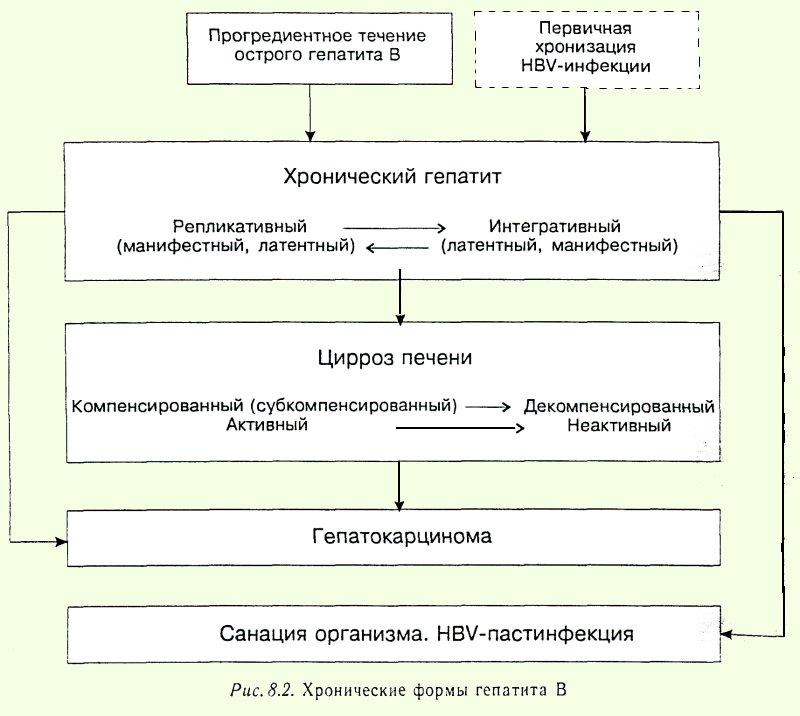Особенности дезинфекции при туберкулезе и вирусных гепатитах