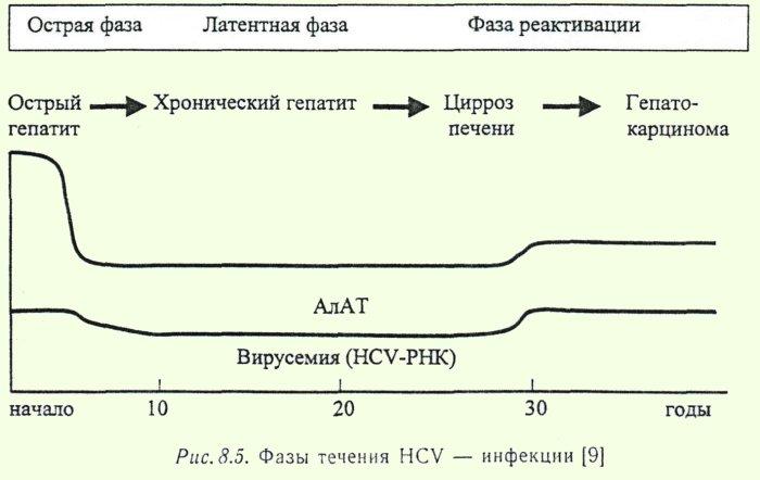 знакомства больных гепатитом с в санкт петербурге