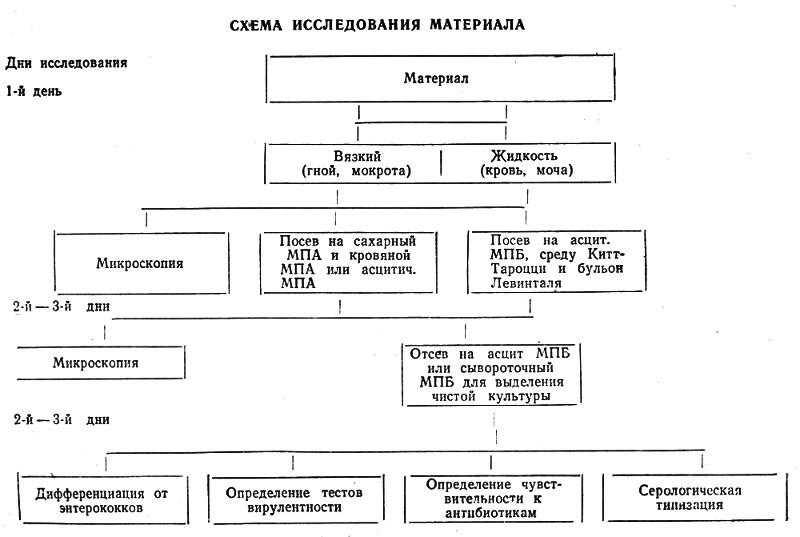 Фибринокиназа фото
