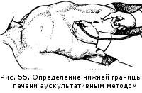 Изображение из категорий русский