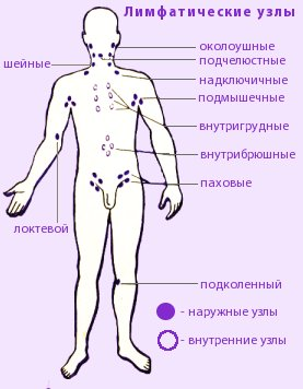 увеличение лимфоузлов на шее как определить