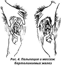 Массаж женских гениталий