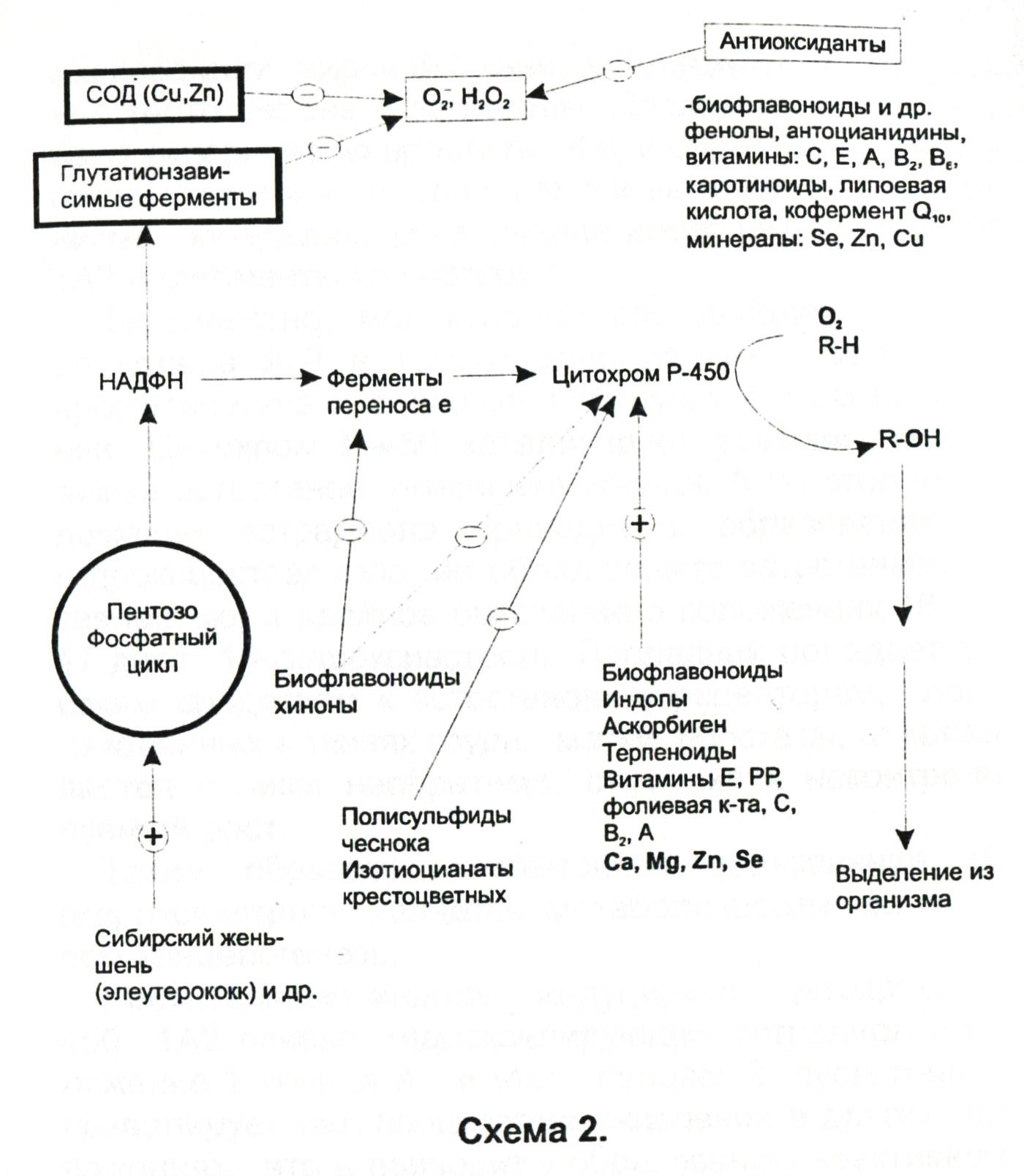 Диамед клиник шереметьевская отзывы
